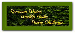 ronovan-writes-haiku-challenge-shadow REDUCED