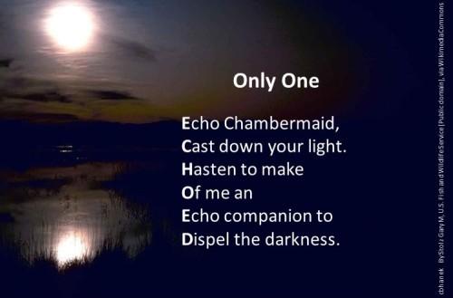pf echo shadow chosen by cmkh (2)